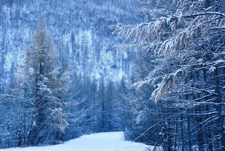"""比东北""""亚雪""""还美的公路,这条小众边境天路,资深驴友都想去!"""