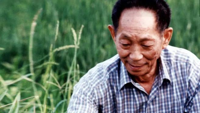 袁隆平:稻田守望者,永远都在