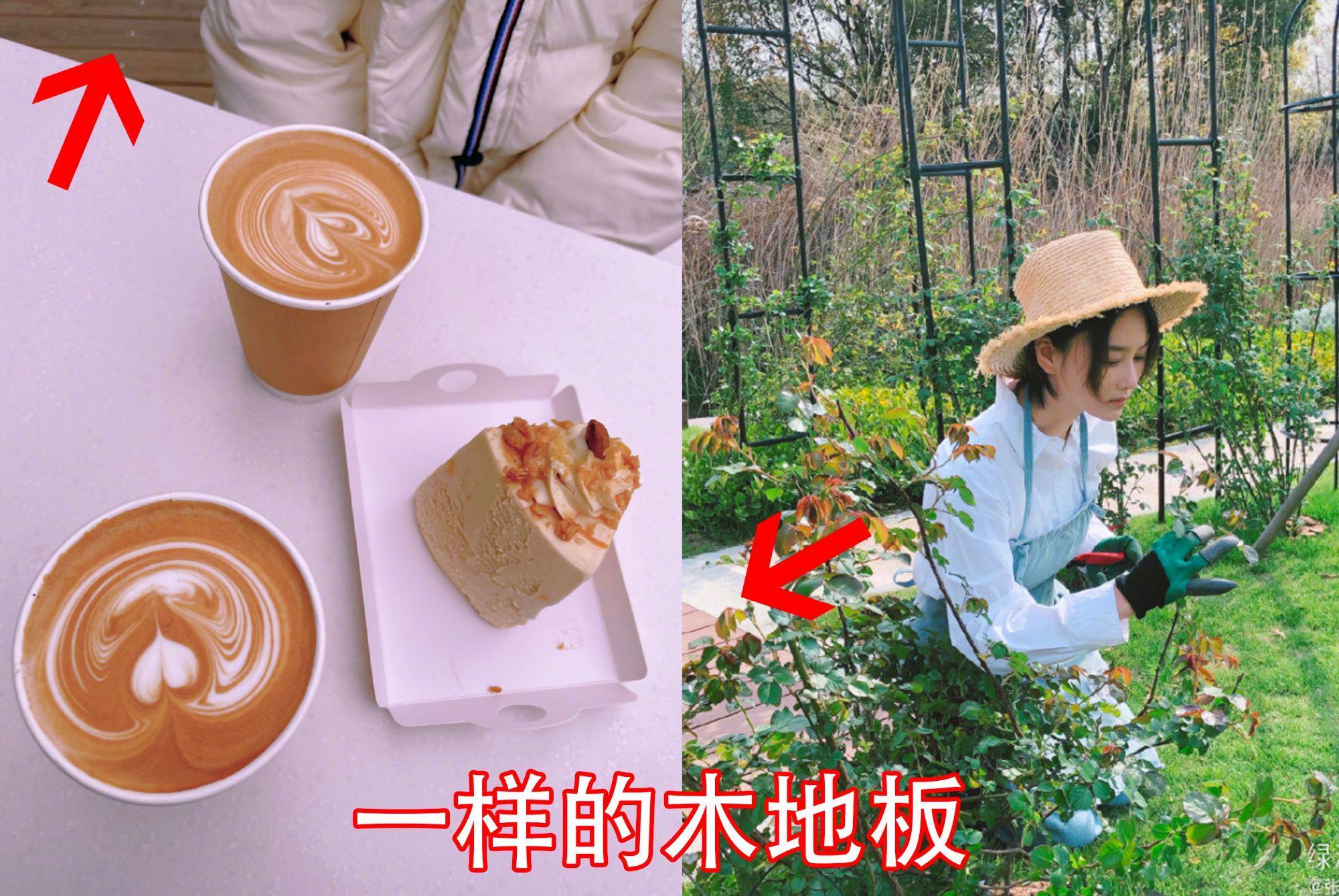 张馨予陪妈妈喝下午茶,亲自手冲咖啡做拉花,为女儿做蛋糕超贤惠