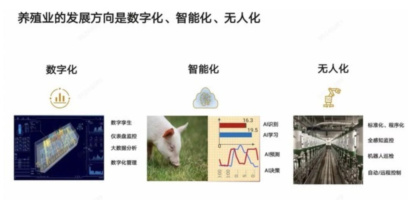 """华为智慧养猪计划确认!官方回应:不养猪,只给养猪""""赋能""""!"""