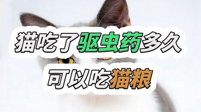 猫吃了驱虫药多久可以吃猫粮