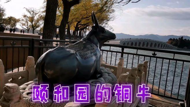 老两口,慢游颐和园,说说十七孔桥头的铜牛!