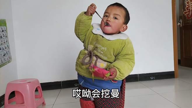 中柬宝宝,奶奶给小顺顺切火龙果了,顺顺拿勺子还要自己挖