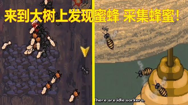 蚂蚁进攻计划08:发现树上藏有蜂蜜,带领蚂蚁大军成功掠夺了蜂蜜