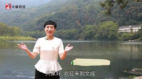 """张蕙娜:我为""""清廉村居""""代言"""