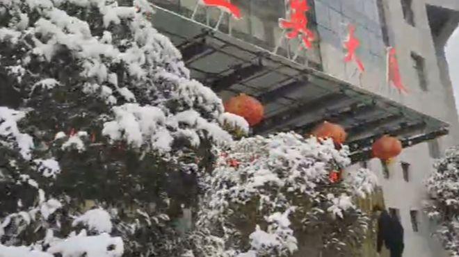 三英康丽莱,与2020年的最后一场雪的邂逅