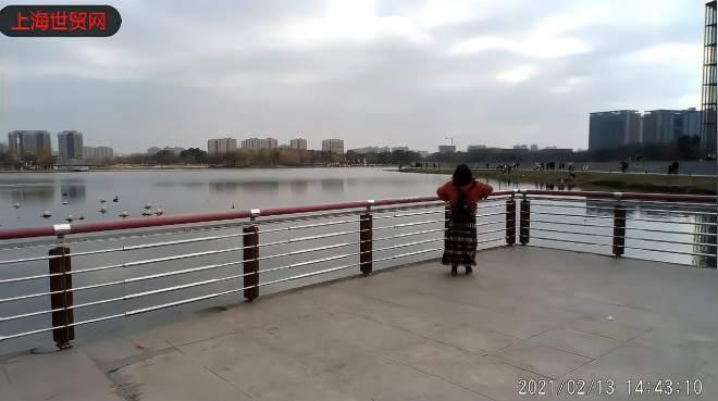 嘉定新城远香湖2021大年初二游记