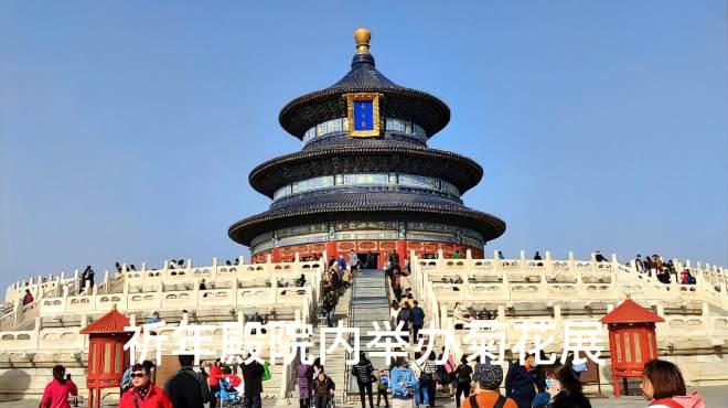 北京天坛,皇帝祭天的地方,举办菊花展