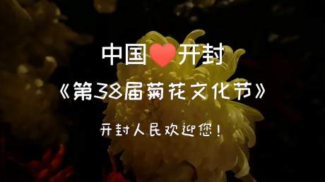 中国开封第38届菊花文化节开幕了,欢迎大家来开封游玩!