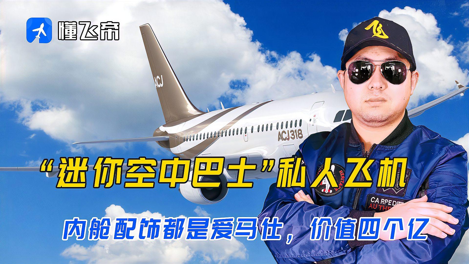 """""""迷你空中巴士""""私人飞机,内舱配饰都是爱马仕,价值四个亿"""