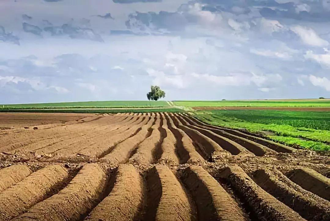 村里让农民把地租给开发商,租金为每亩500元一年,这合理吗?