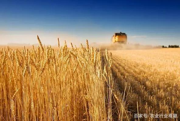 """政策:土地出让收入8%用于农业农村;中国邮政开启""""寄递+""""模式"""