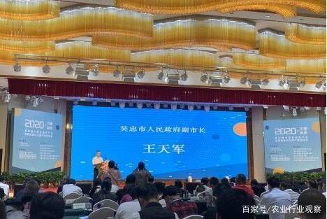 """宁夏吴忠市摘得""""亚麻籽油之乡""""称号,推动亚麻籽产业高质量发展"""