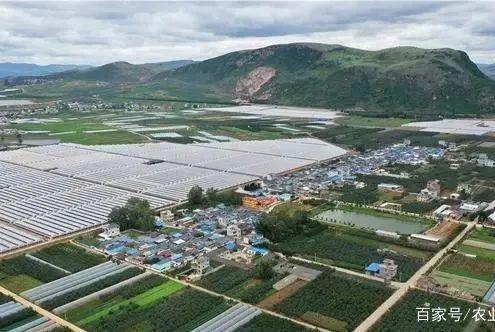 我国粮食储备充足,消费者不必恐慌;中国农业正从单一走向复合型