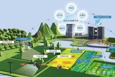 王小兵:农村发展数字经济潜力巨大;明明:农业应该要留住年轻人