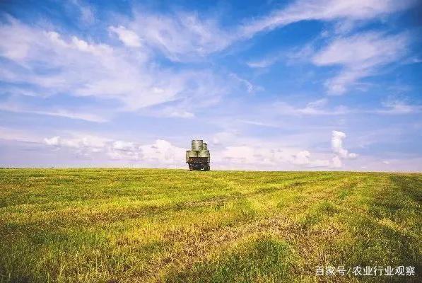 政策:我国将建设一批农产品加工园;农业农村部:国内仔猪奇缺