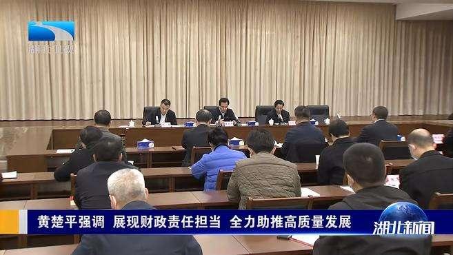 黄楚平强调 展现财政责任担当 全力助推高质量发展丨武汉