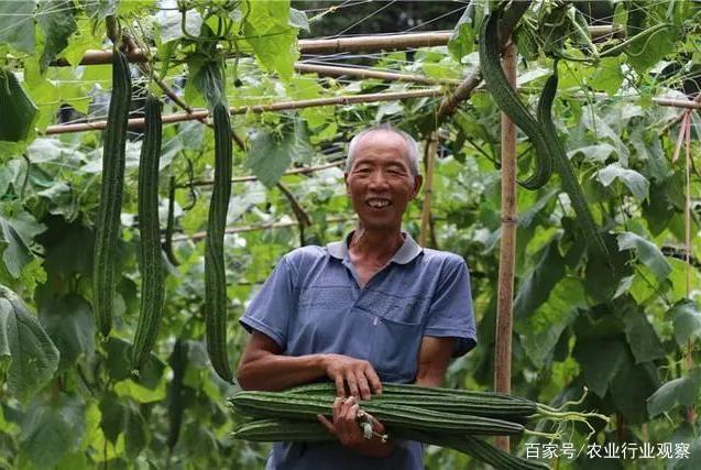 """政策重点扶持县级以上农民合作社;煌上煌成为卤味界""""差等生"""""""