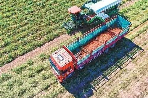 政策:种植设施市场或引爆;报告:农村产业核心竞争力不强