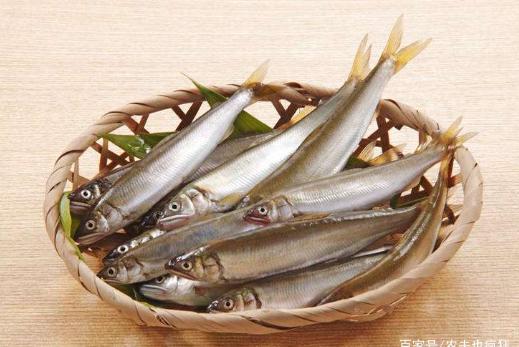 """寿命仅1年,最长不到20CM,自带香味,在日本被称""""淡水鱼之王"""""""
