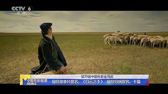 第33届中国电影金鸡奖提名——最佳故事片 最佳导演
