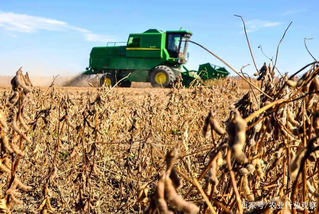 我国或建设国家级大豆种子生产基地;院士:中国功能农业前景广阔