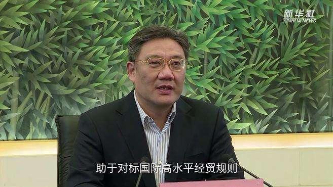 如何用好RCEP红利?听听商务部部长王文涛怎么说