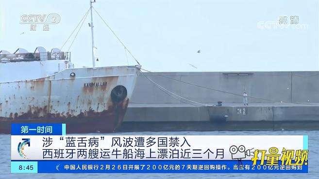 西班牙两船牛海上漂泊近3个月